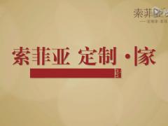 索菲亚全屋定制工厂 超清(720P) (226播放)
