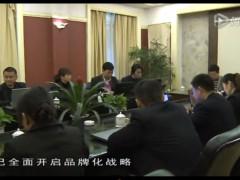 重庆立群门业爱尚家木门宣传片 高清(480P) (103播放)